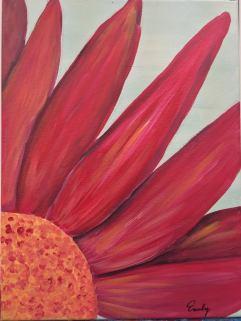 red-daisy